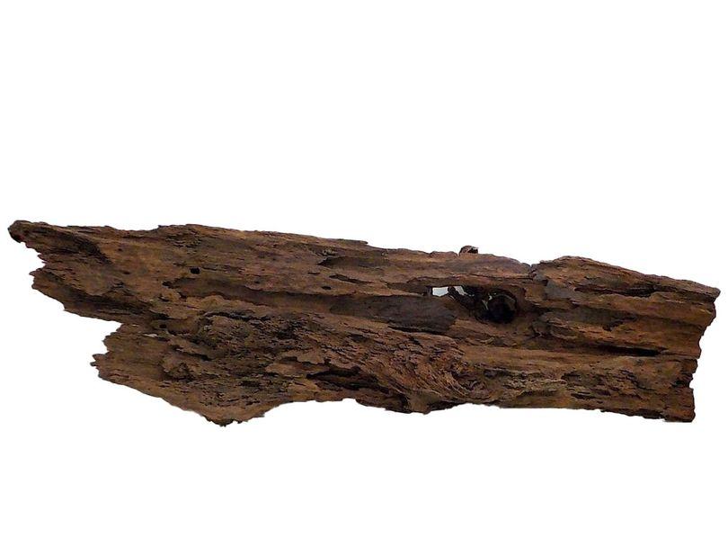 XXXL  Mangrovenwurzel Nr.8425 Holz Deko Aquascaping