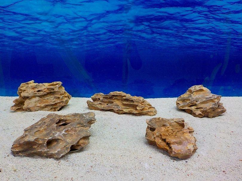 """Aquarium Drachenstein Dekosteine Art.62 """"original Foto"""" Größe M 10-18cm Nr.8440"""