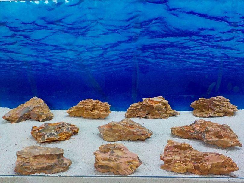"""Aquarium Drachenstein Dekosteine Art.62 """"original Foto"""" Größe M 10-18cm Nr.8436"""