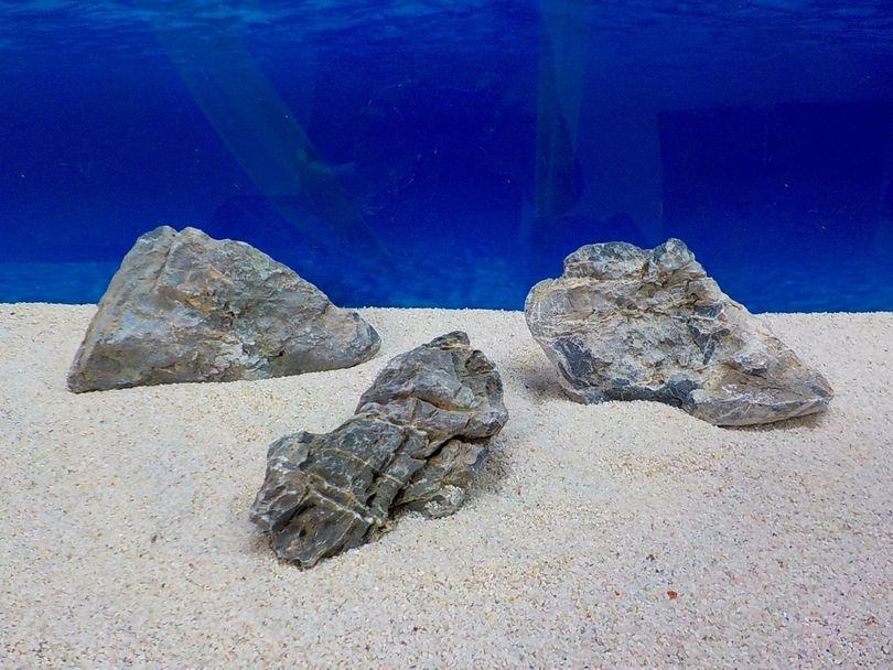 "Aquarium graue Dekosteine Seiryu Art.67 ""original Foto"" Größe M 12-18cm Nr.8510"