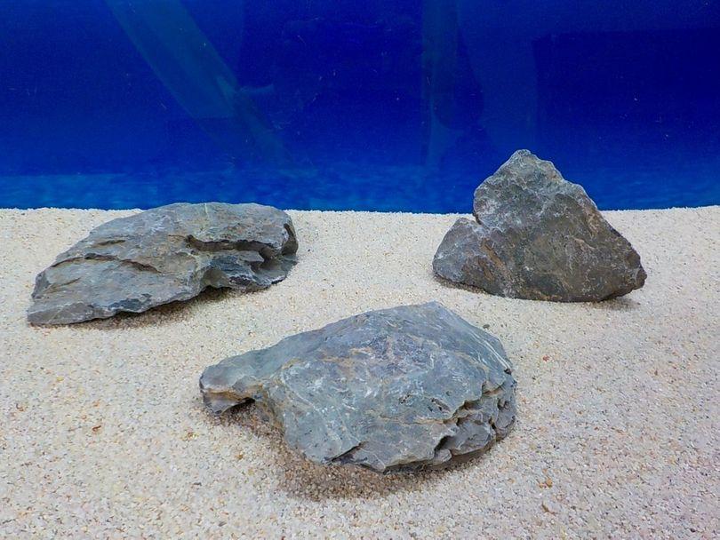 "Aquarium graue Dekosteine Seiryu Art.67 ""original Foto"" Größe M 12-18cm Nr.8515"