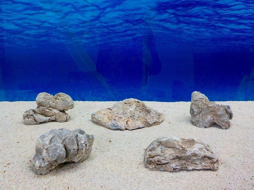 "Aquarium graue Dekosteine Seiryu Art.67 ""original Foto"" Größe M 12-18cm Nr.8480"
