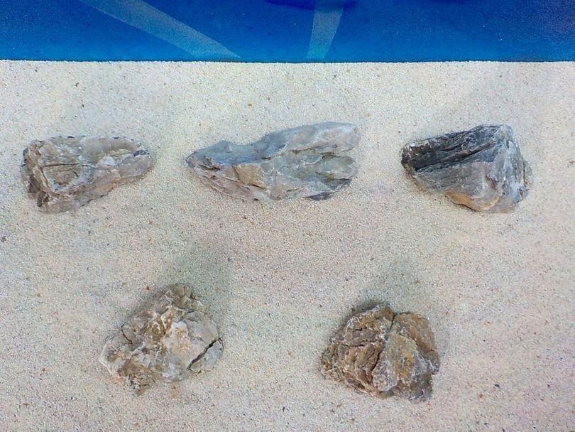 """Aquarium graue Dekosteine Seiryu Art.67 """"original Foto"""" Größe M 12-18cm Nr.8495 Bild 3"""
