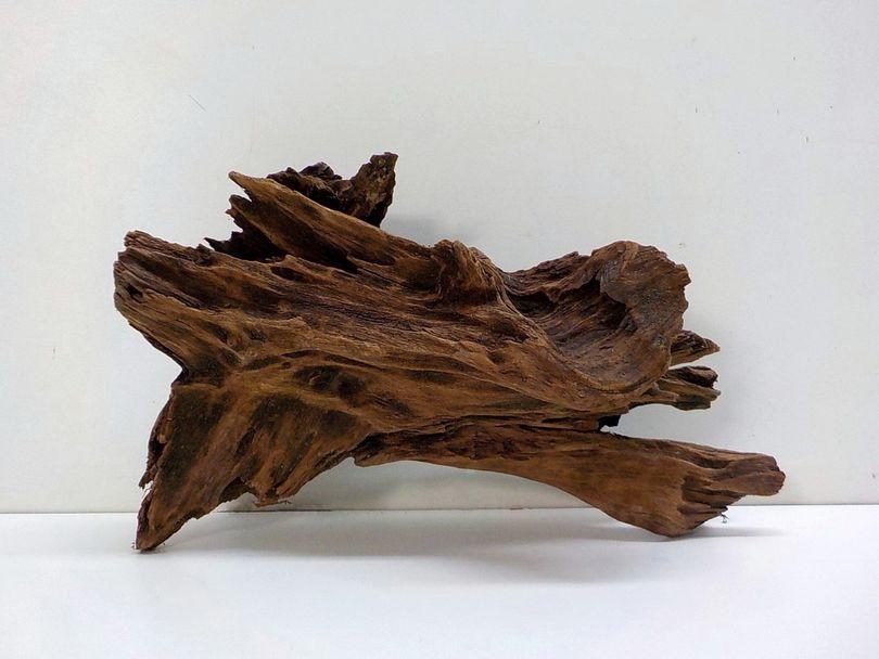 XL Mangrovenwurzel Maße 49x22x30 Nr.8519