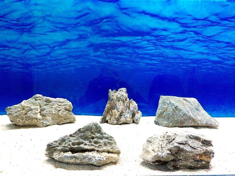 "Aquarium graue Dekosteine Seiryu Art.68 ""original Foto"" Größe L 12-35cm Nr.8562"