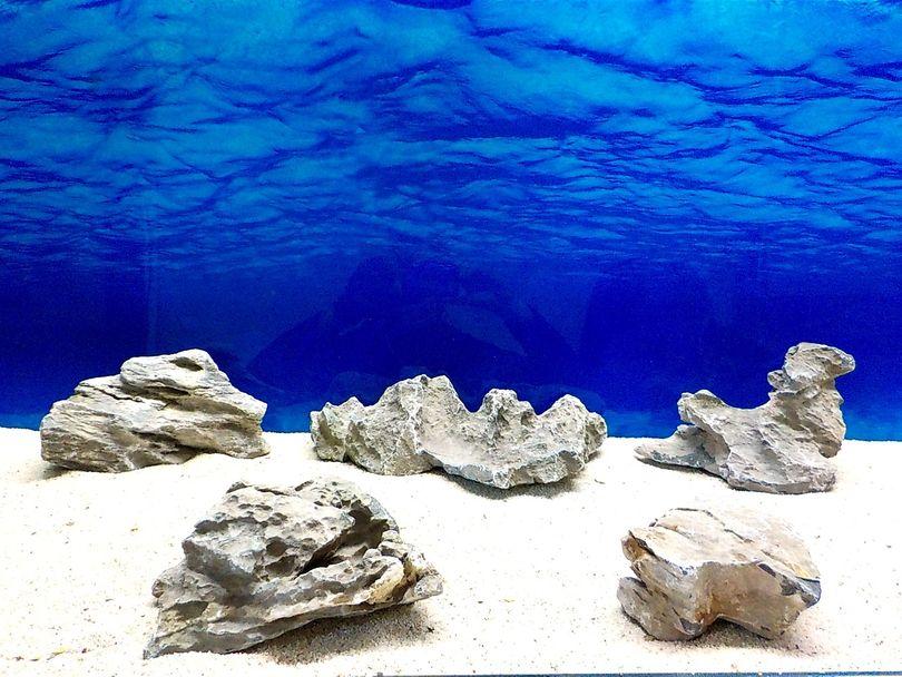 "Aquarium graue Dekosteine Seiryu Art.68 ""original Foto"" Größe L 12-35cm Nr.8565"