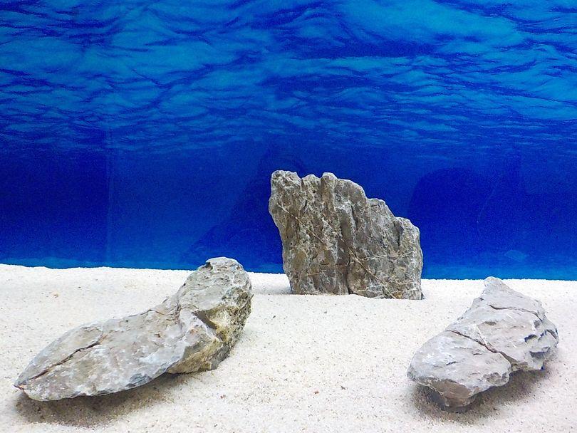 "Aquarium graue Dekosteine Seiryu Art.68 ""original Foto"" Größe L 12-35cm Nr.8574"