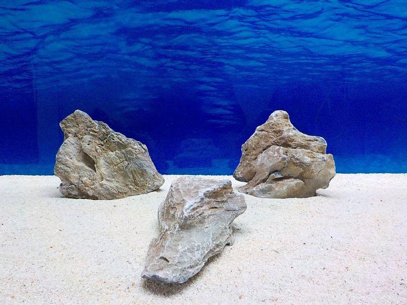 "Aquarium graue Dekosteine Seiryu Art.68 ""original Foto"" Größe L 12-35cm Nr.8578"