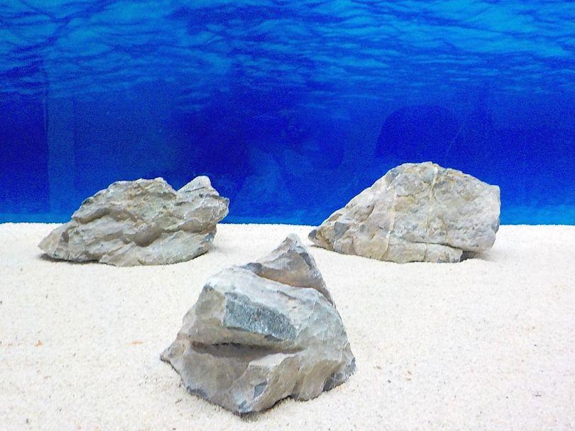 "Aquarium graue Dekosteine Seiryu Art.68 ""original Foto"" Größe L 12-35cm Nr.8580"