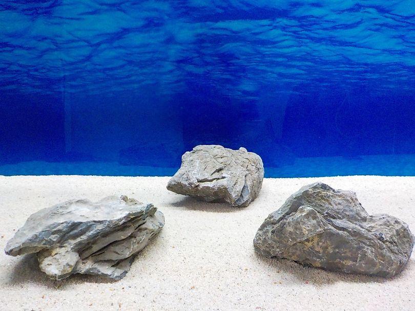 "Aquarium graue Dekosteine Seiryu Art.68 ""original Foto"" Größe L 12-35cm Nr.8582"