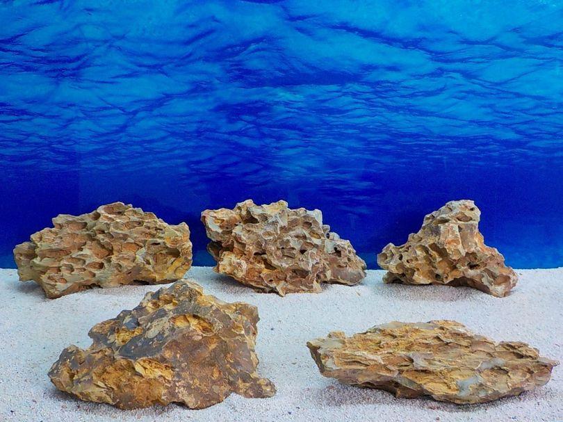 """Aquarium Drachenstein Dekosteine Art.63 """"original Foto"""" Größe L 15-35cm Nr.8586"""