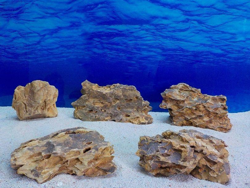 """Aquarium Drachenstein Dekosteine Art.63 """"original Foto"""" Größe L 15-35cm Nr.8587"""