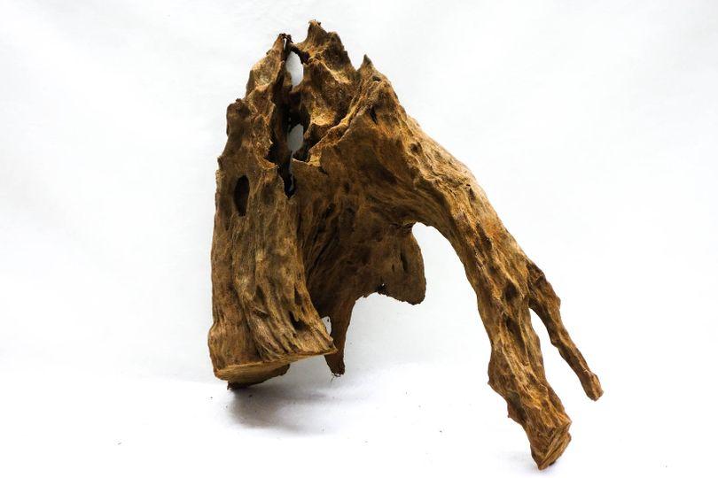 XL Mangrovenwurzel Maße 37x27x36 Nr.8682