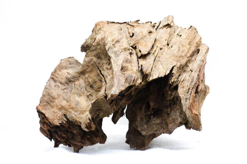 XL Mangrovenwurzel Maße 36x40x29 Nr.8701