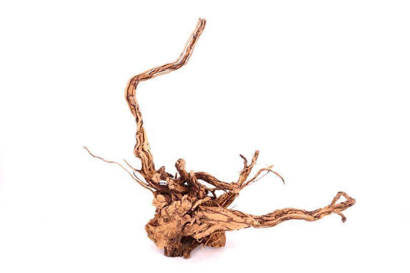 L Drachen Wurzel Nr.9385 Holz Deko Aquascaping