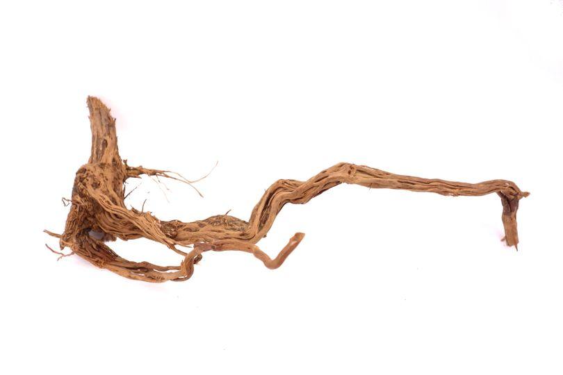 L Drachen Wurzel Nr.9456 Holz Deko Aquascaping
