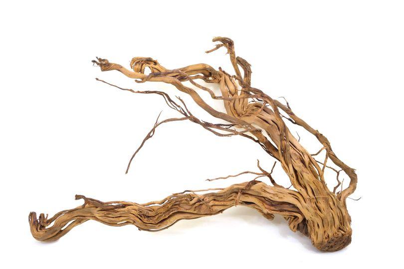 XL Drachen Wurzel Nr.9421 Holz Deko Aquascaping