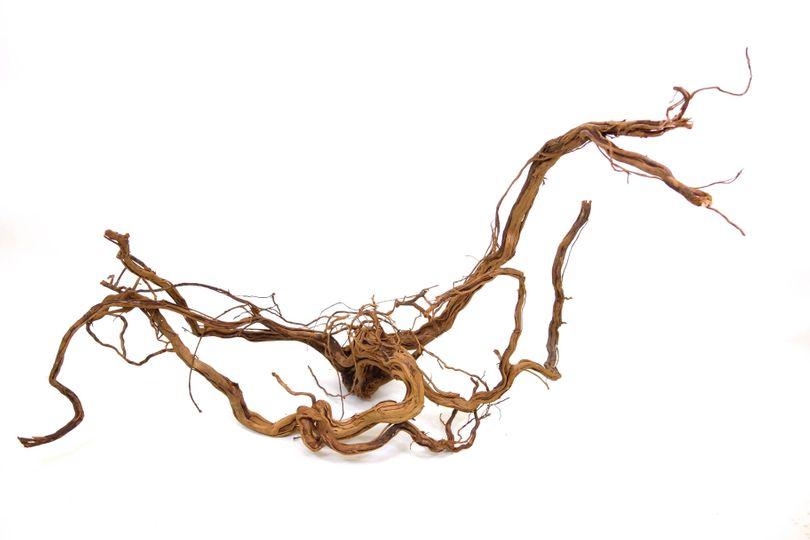 XL Drachen Wurzel Nr.9423 Holz Deko Aquascaping