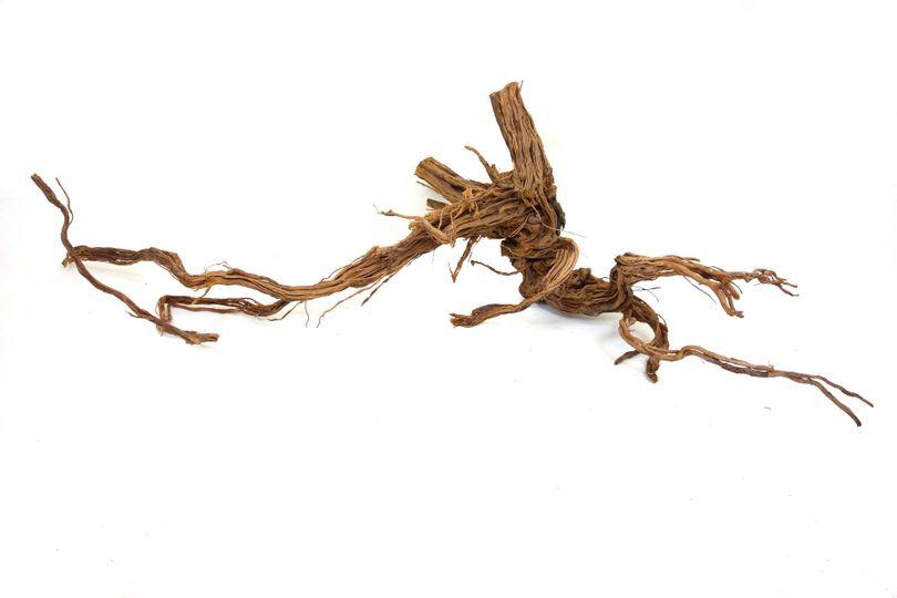 XL Drachen Wurzel Nr.9431 Holz Deko Aquascaping