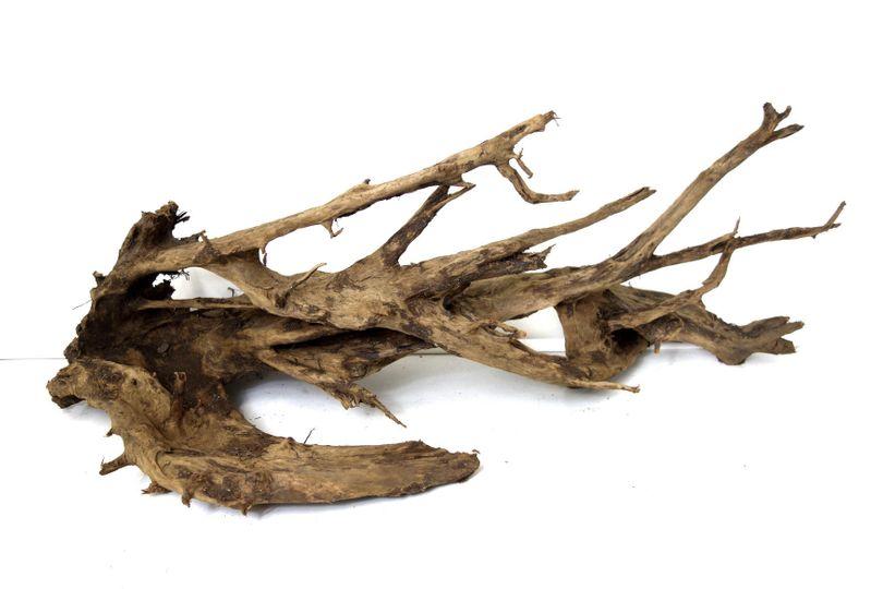 XXL Mangrovenwurzel Nr.9497 Holz Deko Aquascaping