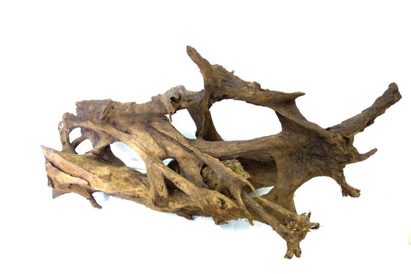 XXL Mangrovenwurzel Nr.9522 Holz Deko Aquascaping