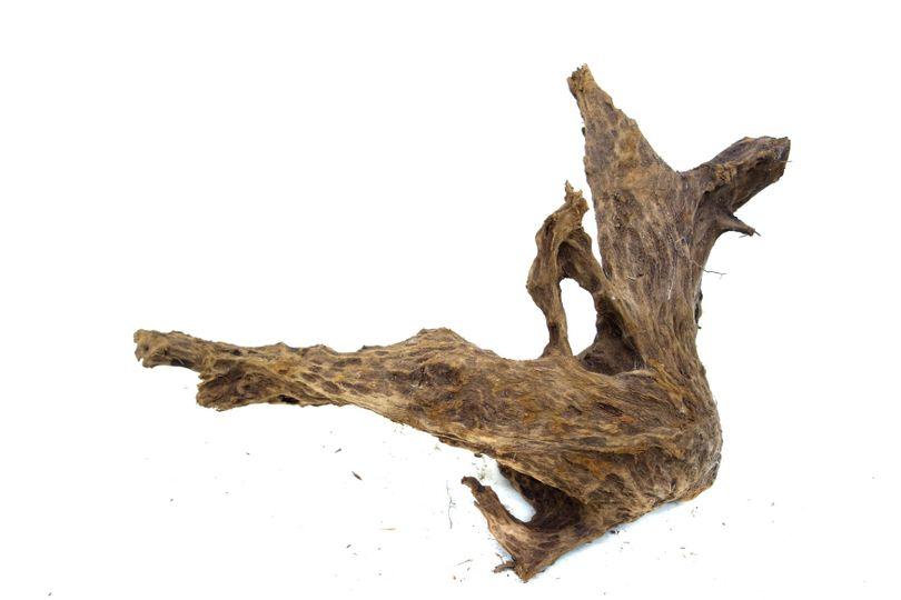XXL Mangrovenwurzel Nr.9528 Holz Deko Aquascaping