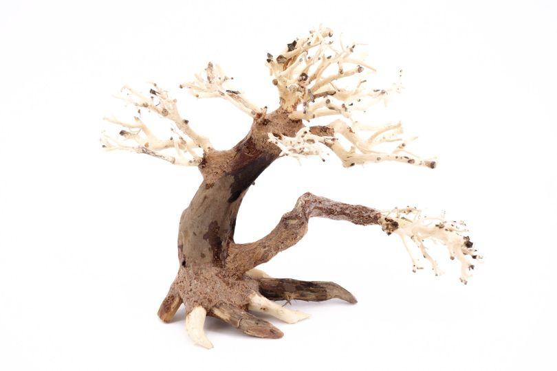 M Bonsai Baum Nr.10400 Wurzel Holz Aquarium Deko Aquascaping