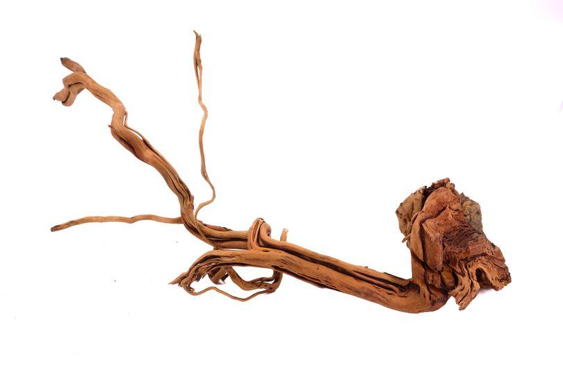 L Drachen Wurzel Nr.9805 Holz Deko Aquascaping