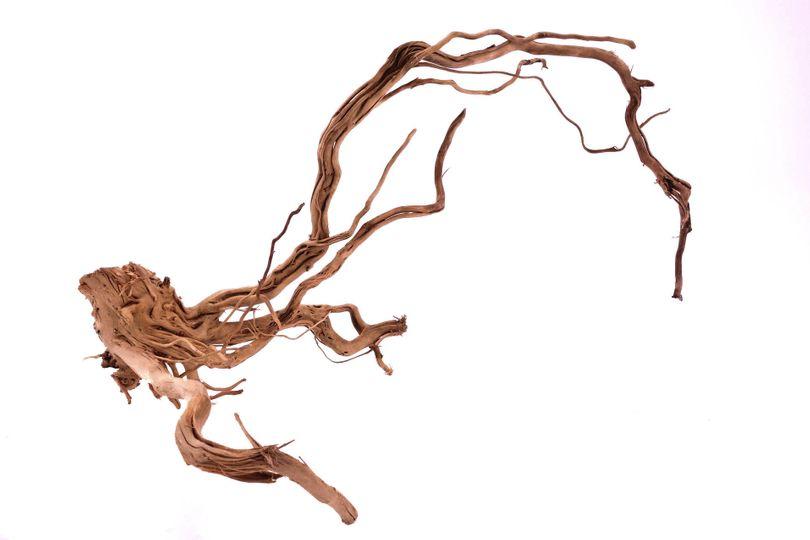L Drachen Wurzel Nr.9817  Holz Deko Aquascaping