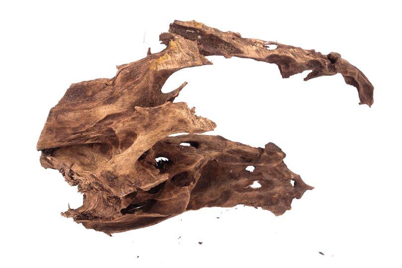 XL Mangrovenwurzel Nr.9931 Holz Deko Aquascaping