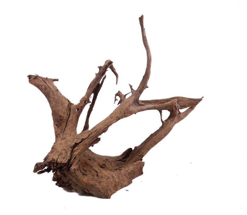 XL Mangrovenwurzel Nr.9938 Holz Deko Aquascaping