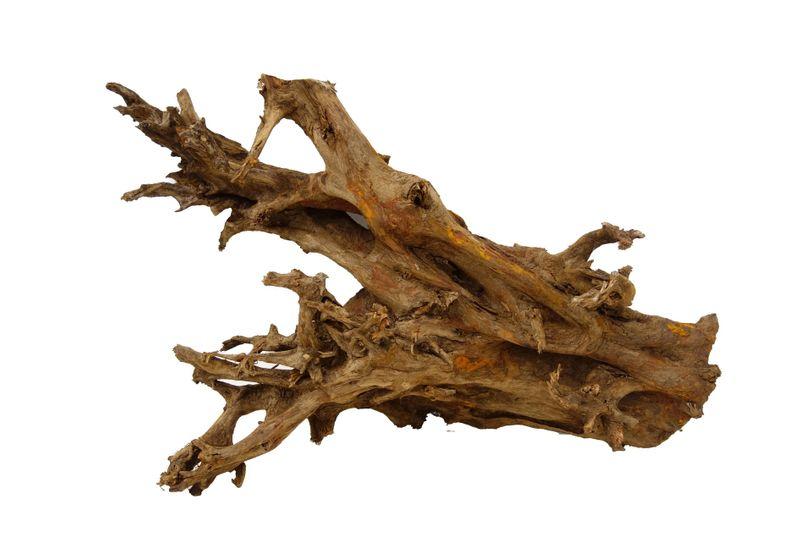 XXL Mangrovenwurzel Nr.1155 Holz Deko Aquascaping