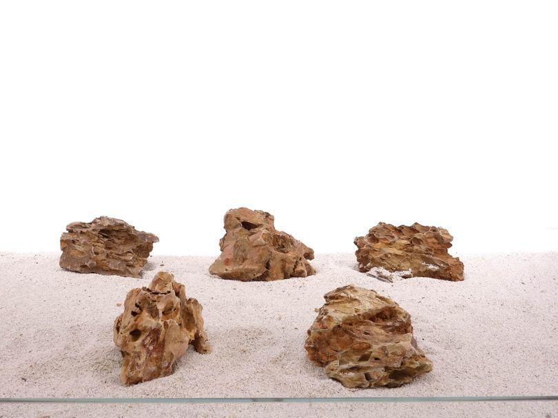 Aquarium Drachenstein Dekosteine Art.62 Größe M 12-18cm Nr.1329