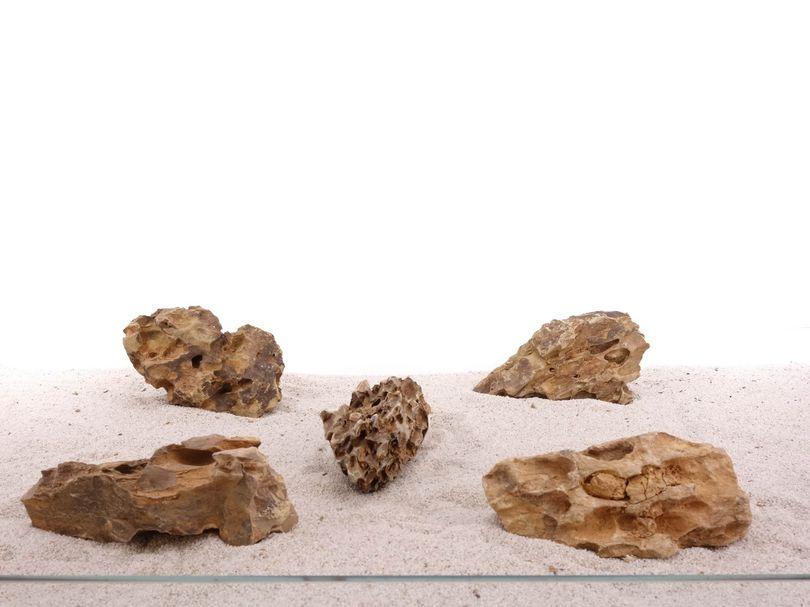 Aquarium Drachenstein Dekosteine Art.62 Größe M 12-18cm Nr.1339