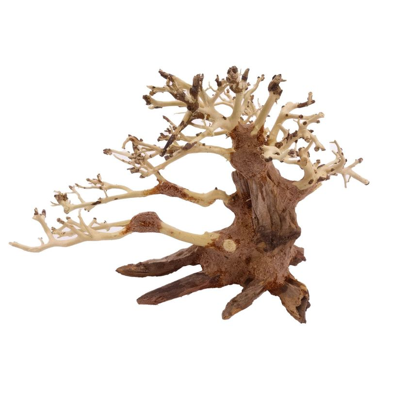 M Bonsai Baum Nr.10427 Wurzel Holz Aquarium Deko Aquascaping