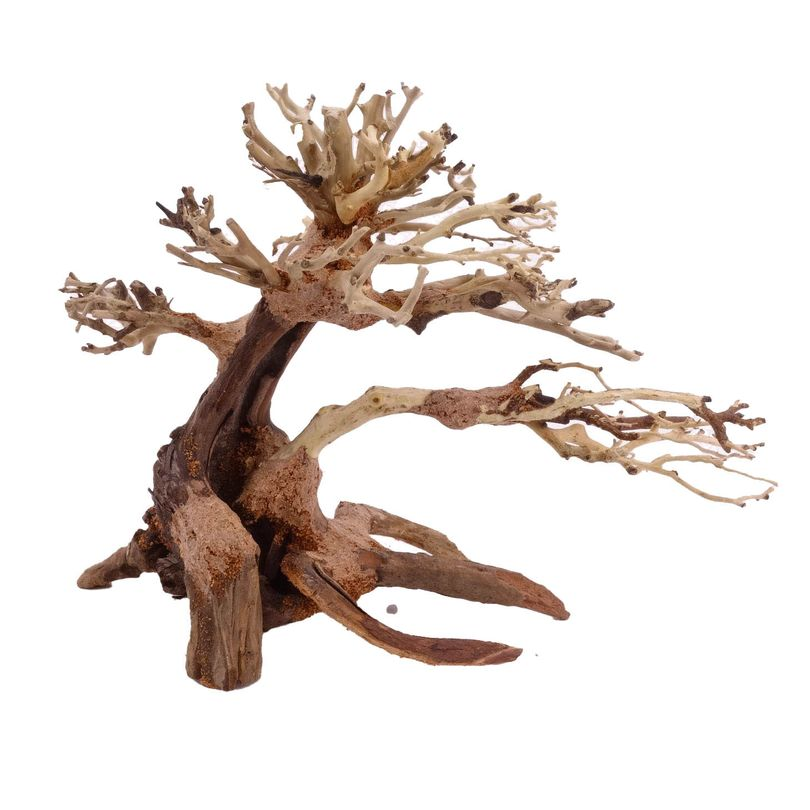 M Bonsai Baum Nr.10444 Wurzel Holz Aquarium Deko Aquascaping