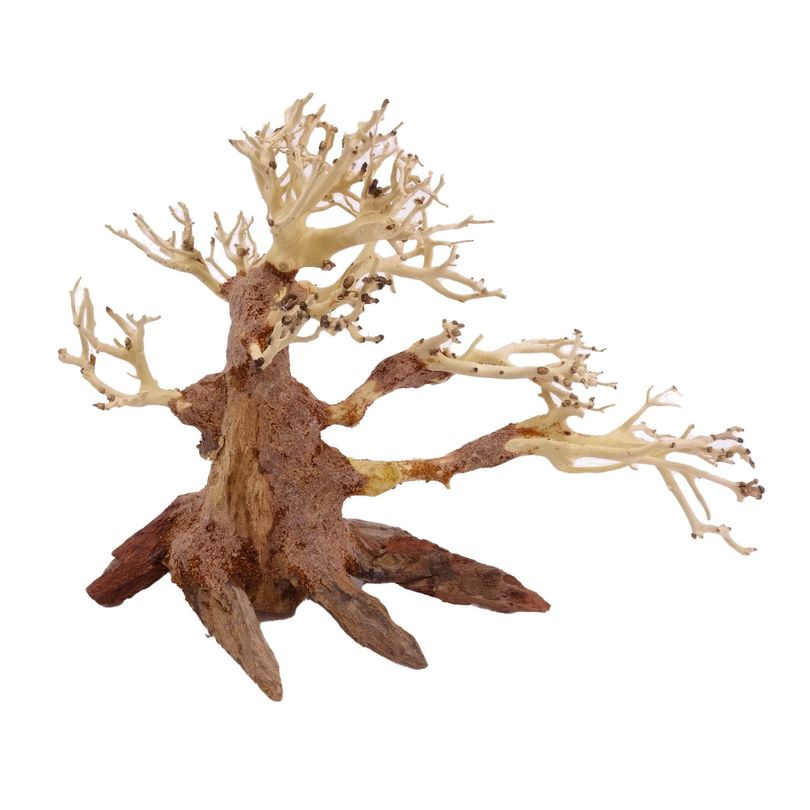 M Bonsai Baum Nr.10448 Wurzel Holz Aquarium Deko Aquascaping