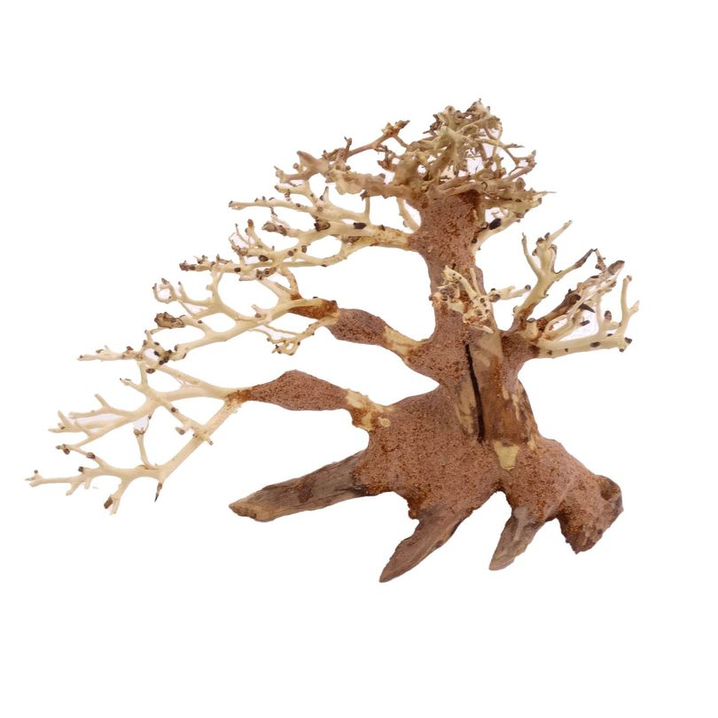 M Bonsai Baum Nr.10458 Wurzel Holz Aquarium Deko Aquascaping