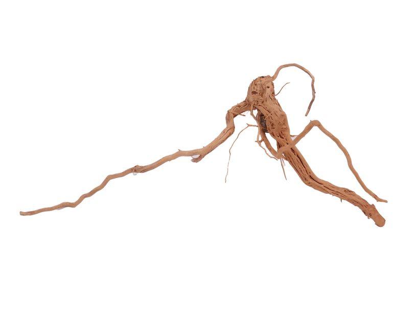 L Drachen Wurzel Nr.1524 Holz Deko Aquascaping