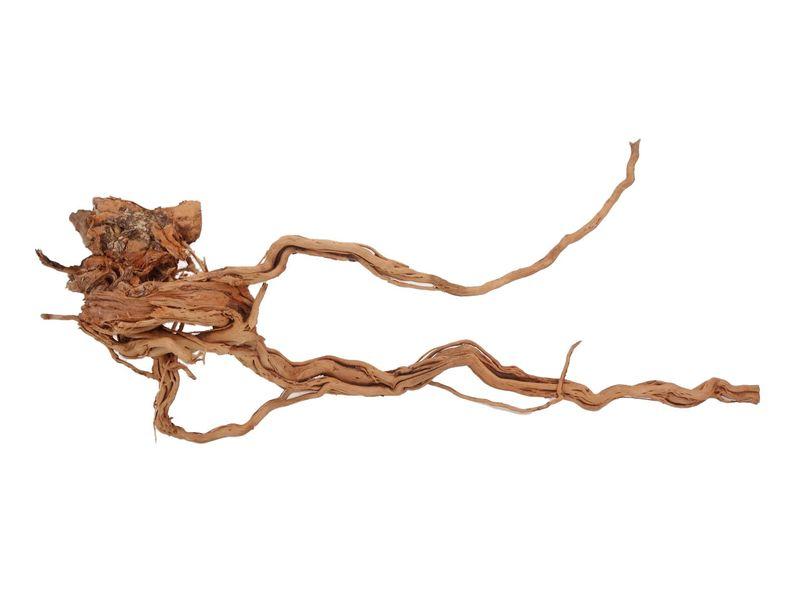 XL Drachen Wurzel Nr.1550 Holz Deko Aquascaping