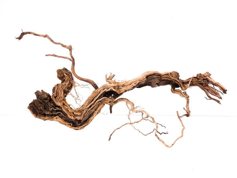 XL Drachen Wurzel Nr.1563 Holz Deko Aquascaping