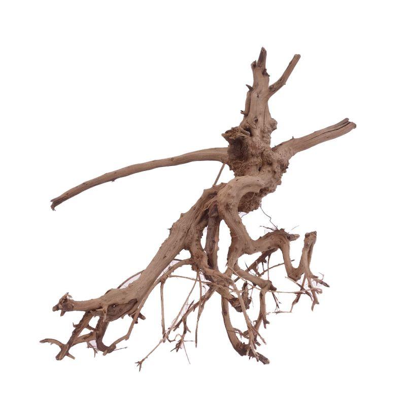 M Siennawurzel Nr.1629 Wurzel Holz Aquarium Deko Aquascaping