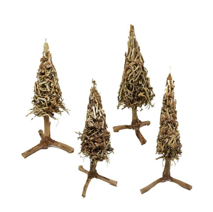 Bonsai Baum Weihnachtsbaum Tannenbaum