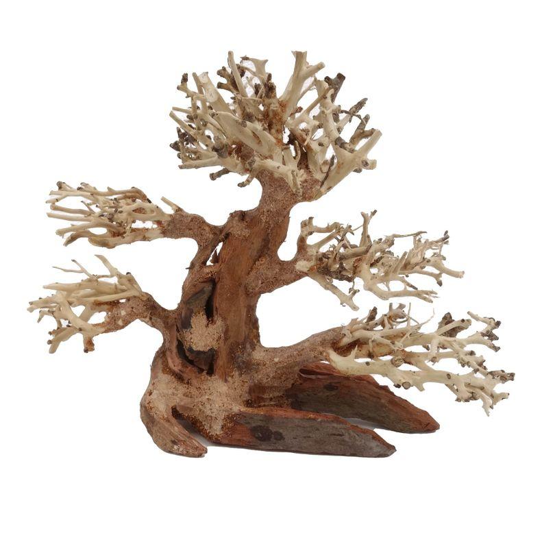 M Bonsai Baum Nr.10469 Wurzel Holz Aquarium Deko Aquascaping