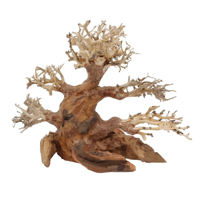 M Bonsai Baum Nr.10484 Wurzel Holz Aquarium Deko Aquascaping