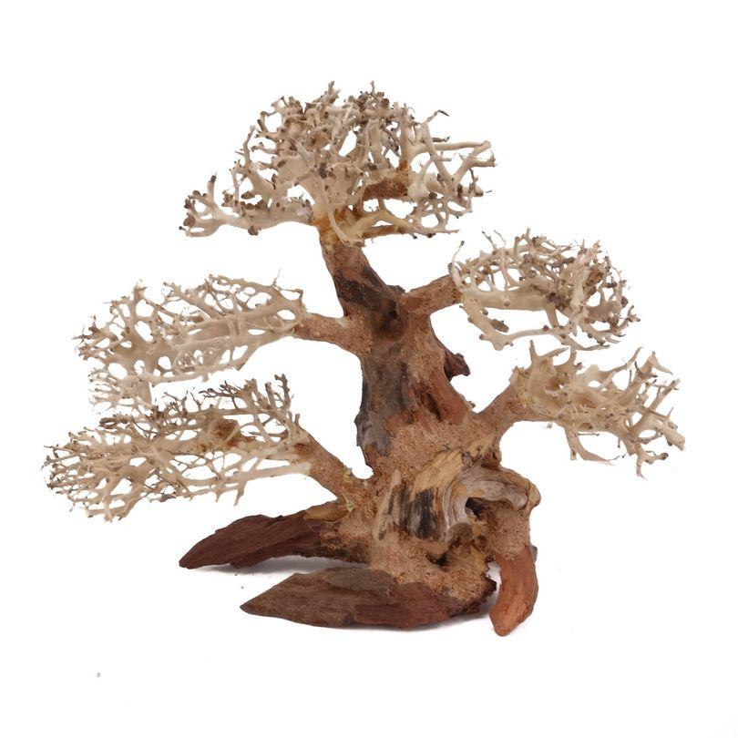 L Bonsai Baum Nr.11271 Wurzel Holz Aquarium Deko Aquascaping