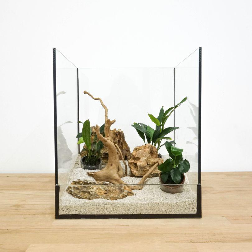 Aquarium Deko Komplettset Steine Wurzel Pflanzen Aquascaping Set Nr.3
