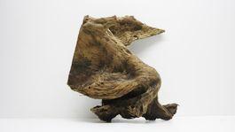 XL Mangrovenwurzel Maße 45x22x39 Nr.1925 Bild 6