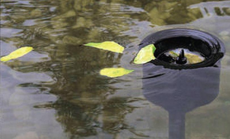 Stand Skimmer AquaForte für Teiche bis zu 30m²  Bild 3