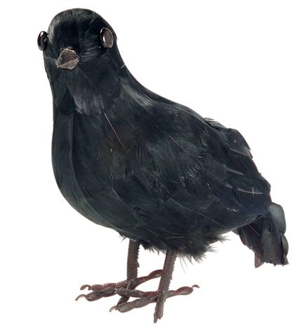 Vogel Krähe Schwarz 23 x 10 cm Halloween Kostümzubehör und Deko – Bild 1